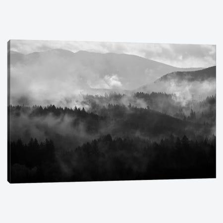Mountain Mist Dream IV Canvas Print #DTH40} by Dautlich Canvas Print