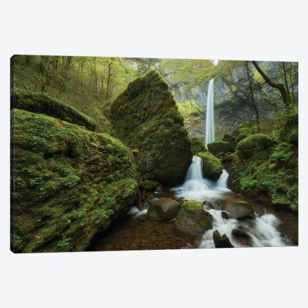 Mystic Waterfall Canvas Print #DTH43} by Dautlich Canvas Print