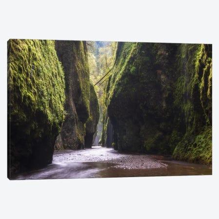 Silent Gorge Canvas Print #DTH52} by Dautlich Canvas Artwork