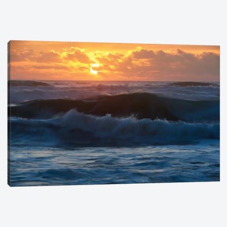 Sunset Dancers Canvas Print #DTH56} by Dautlich Canvas Art Print