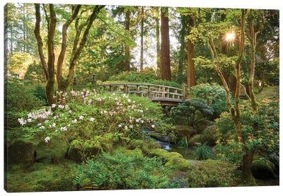 Zen Garden Canvas Art Print