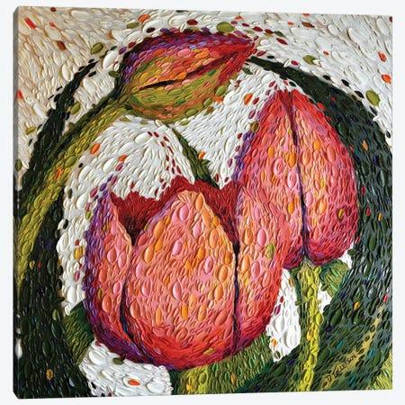 Peaceful Garden  Canvas Print #DTO25} by Dena Tollefson Canvas Art Print