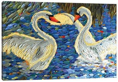 Swan Love II Canvas Art Print