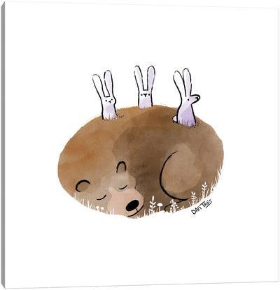 Bunny Lookout Canvas Art Print