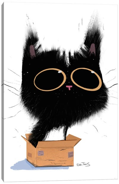 Cat In Box Canvas Art Print