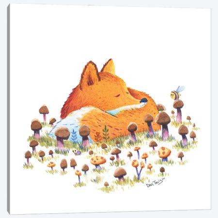 Fox And Mushrooms Canvas Print #DTV27} by Dan Tavis Canvas Wall Art