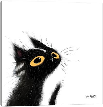 Mischievous Black Cat Canvas Art Print