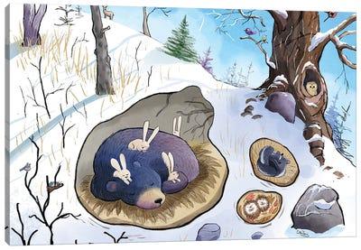 Bear Sleeps Canvas Art Print