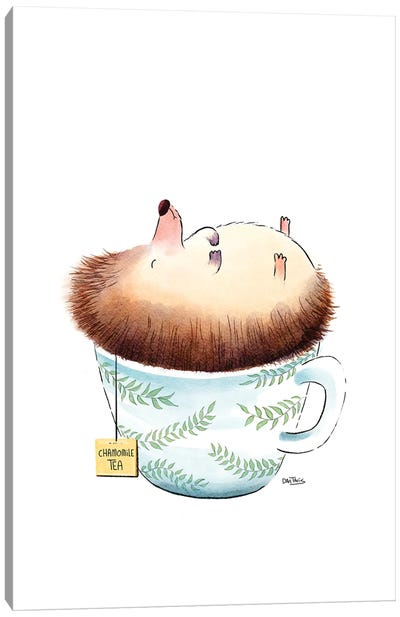 Sleeping Hedgehog Canvas Art Print