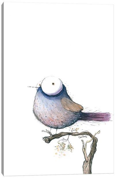 Big Eyed Bird Canvas Art Print