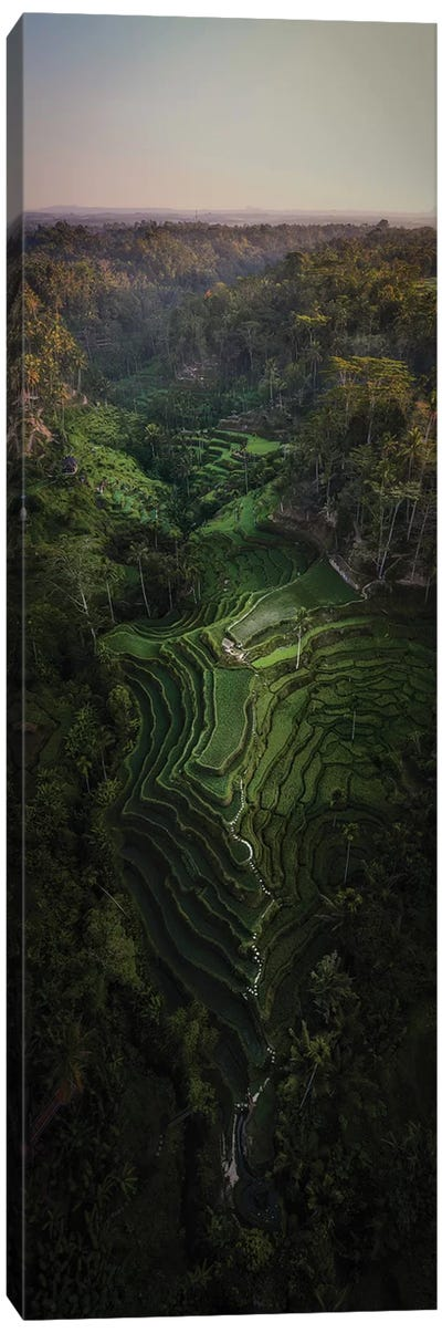 Bali III Canvas Art Print