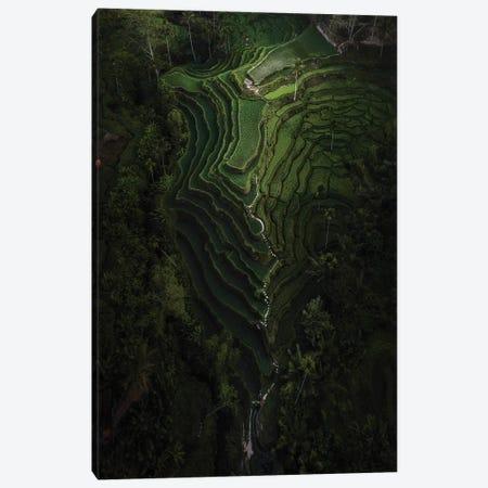 Bali IV Canvas Print #DUE103} by Daisuke Uematsu Canvas Artwork