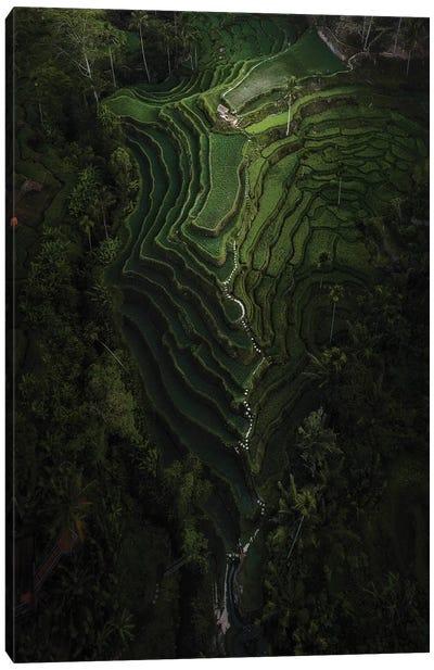 Bali IV Canvas Art Print