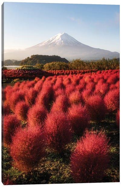 Mount Fuji XVII Canvas Art Print