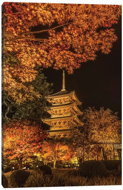 Autumn In Japan XI Canvas Art Print