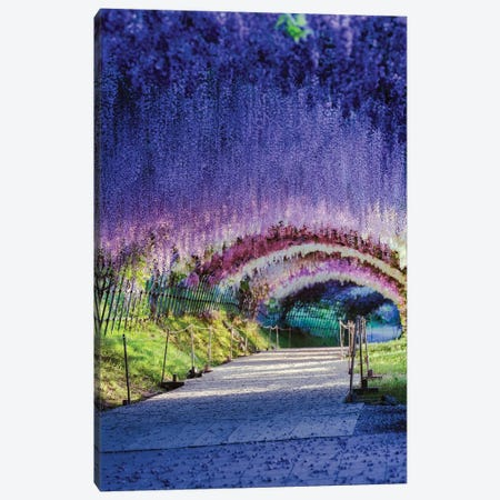 Spring In Japan XXI Canvas Print #DUE121} by Daisuke Uematsu Canvas Wall Art