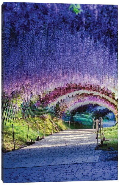 Spring In Japan XXI Canvas Art Print