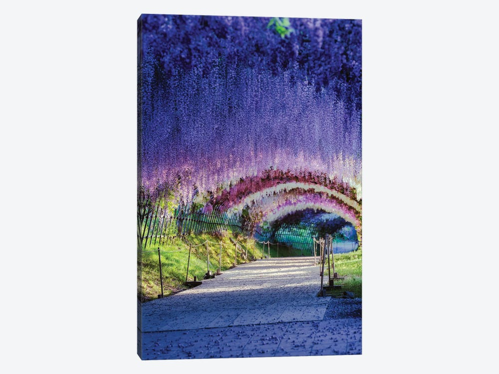 Spring In Japan XXI 1-piece Canvas Wall Art