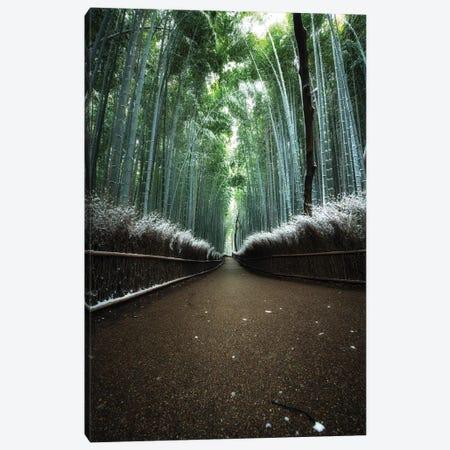 Winter In Japan V Canvas Print #DUE131} by Daisuke Uematsu Canvas Art Print