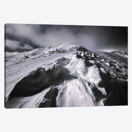 Winter In Japan VI Canvas Print #DUE132} by Daisuke Uematsu Canvas Art Print