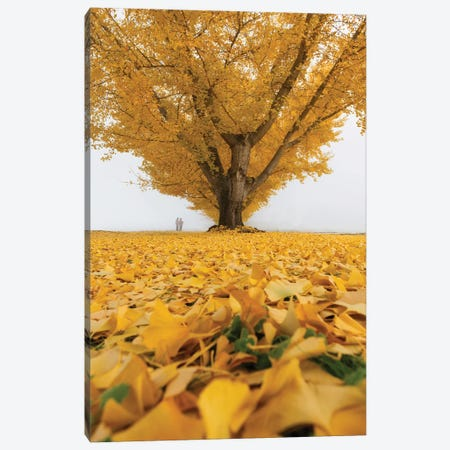 Autumn In Japan XXXII Canvas Print #DUE134} by Daisuke Uematsu Canvas Wall Art
