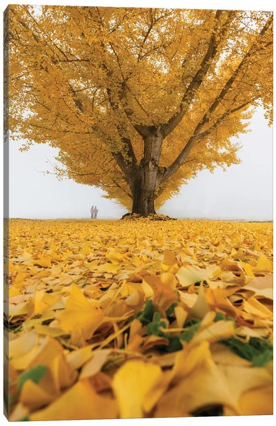 Autumn In Japan XXXII Canvas Art Print