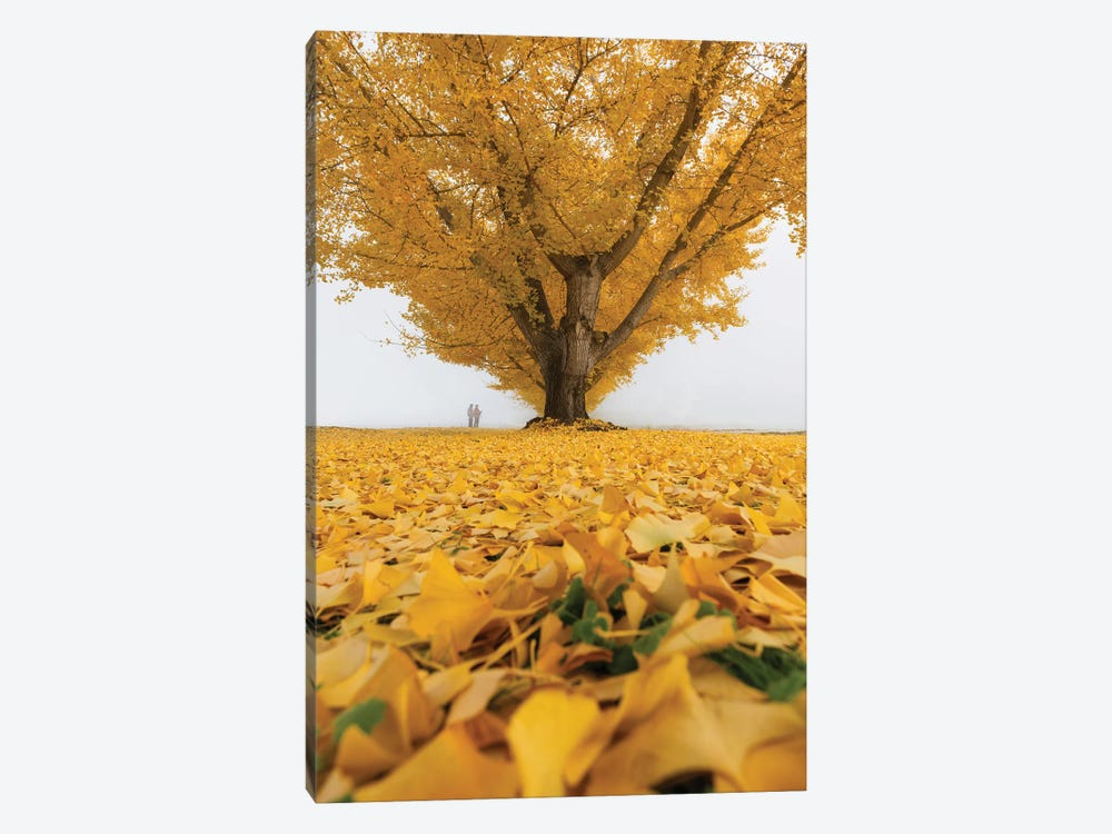 Autumn In Japan XXXII by Daisuke Uematsu 1-piece Canvas Artwork