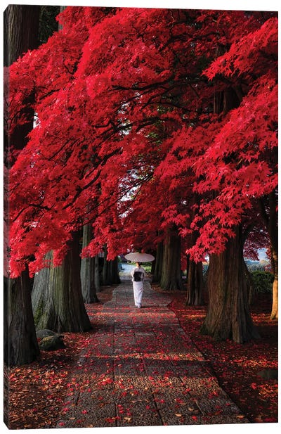 Autumn In Japan XXXIII Canvas Art Print