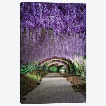 Spring In Japan XXVII Canvas Print #DUE136} by Daisuke Uematsu Canvas Wall Art