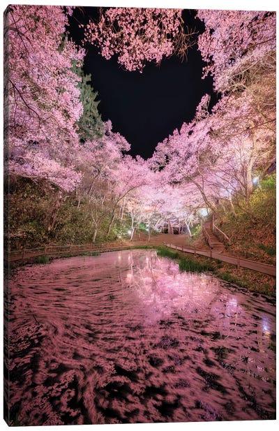 Spring In Japan XXIX Canvas Art Print