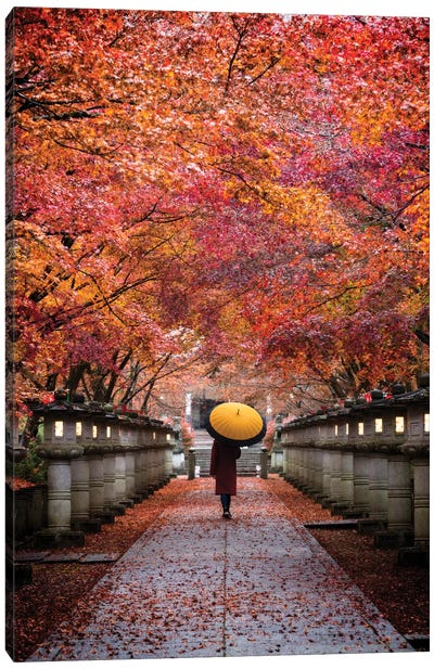 Autumn In Japan XIII Canvas Art Print