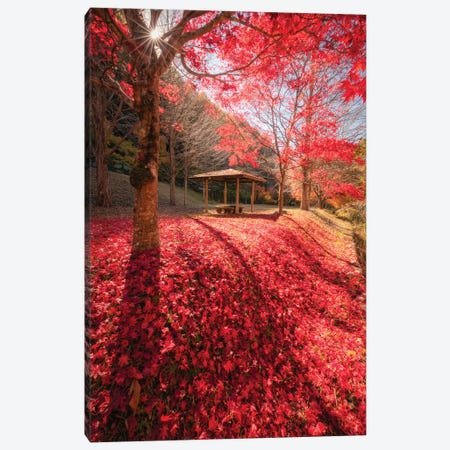 Autumn In Japan XXXIV Canvas Print #DUE143} by Daisuke Uematsu Canvas Artwork