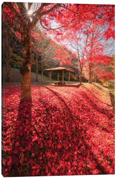 Autumn In Japan XXXIV Canvas Art Print