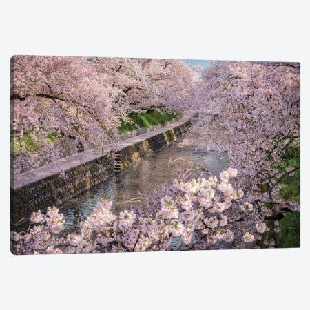 Spring In Japan XXXI Canvas Print #DUE151} by Daisuke Uematsu Canvas Art Print
