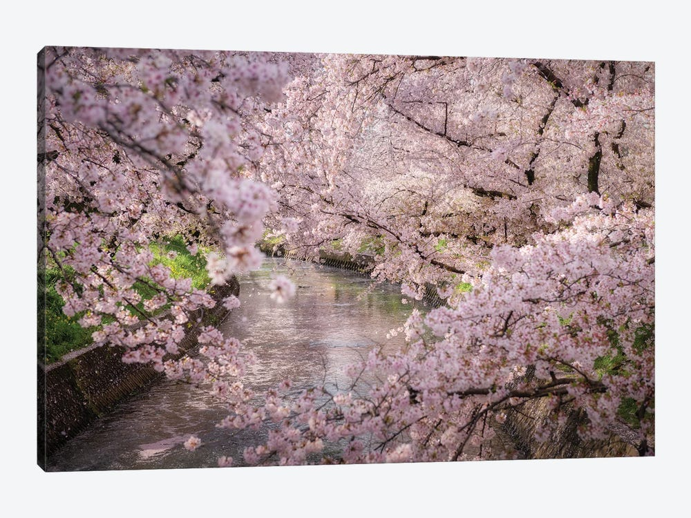 Spring In Japan XXXII by Daisuke Uematsu 1-piece Canvas Artwork