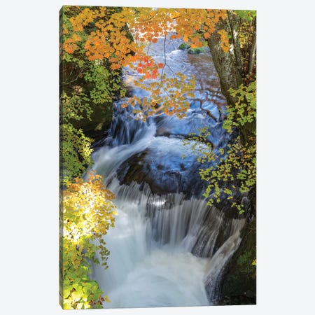Autumn In Japan XVII Canvas Print #DUE17} by Daisuke Uematsu Canvas Art Print