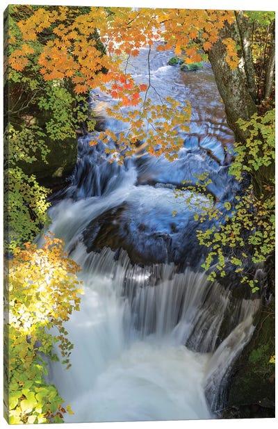 Autumn In Japan XVII Canvas Art Print