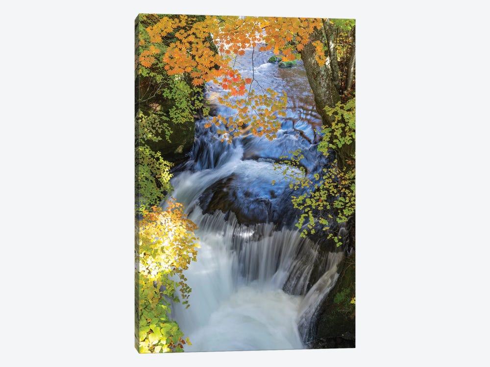 Autumn In Japan XVII by Daisuke Uematsu 1-piece Canvas Print