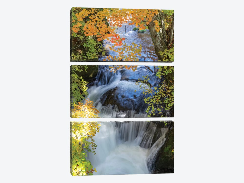 Autumn In Japan XVII by Daisuke Uematsu 3-piece Art Print