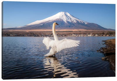 Mount Fuji I Canvas Art Print