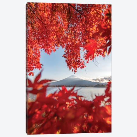 Autumn In Japan III Canvas Print #DUE3} by Daisuke Uematsu Canvas Art