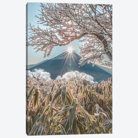 Mount Fuji VIII Canvas Print #DUE40} by Daisuke Uematsu Art Print