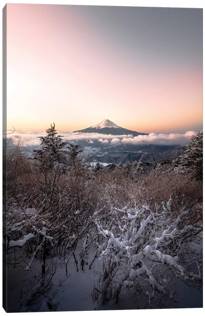 Mount Fuji XII Canvas Art Print