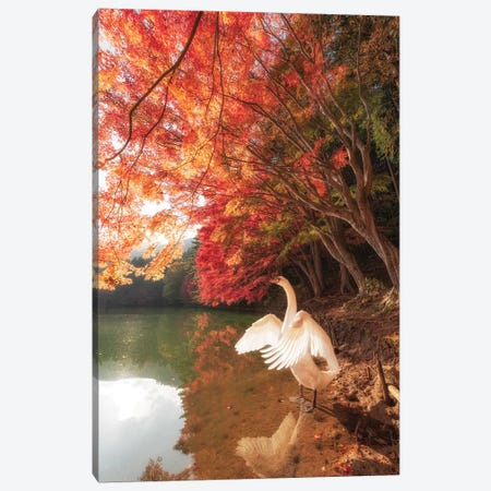 Autumn In Japan IV Canvas Print #DUE4} by Daisuke Uematsu Canvas Art Print