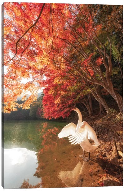 Autumn In Japan IV Canvas Art Print