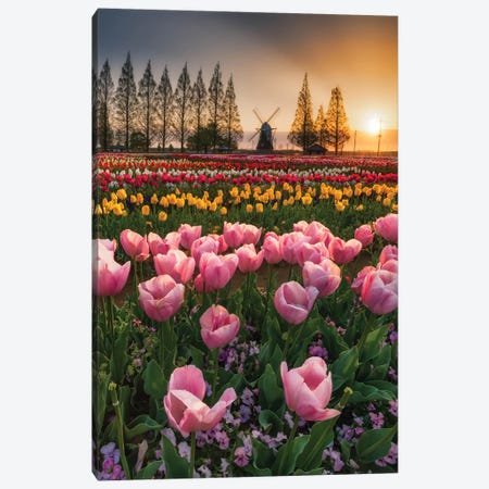 Spring In Japan I Canvas Print #DUE51} by Daisuke Uematsu Canvas Artwork