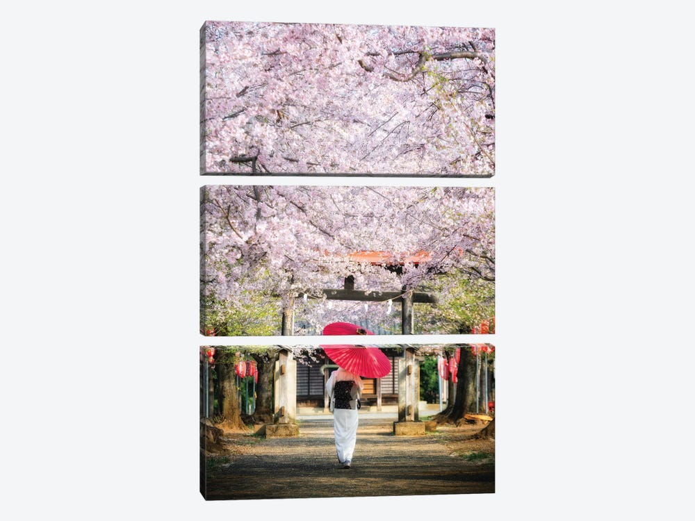 Spring In Japan II by Daisuke Uematsu 3-piece Canvas Art