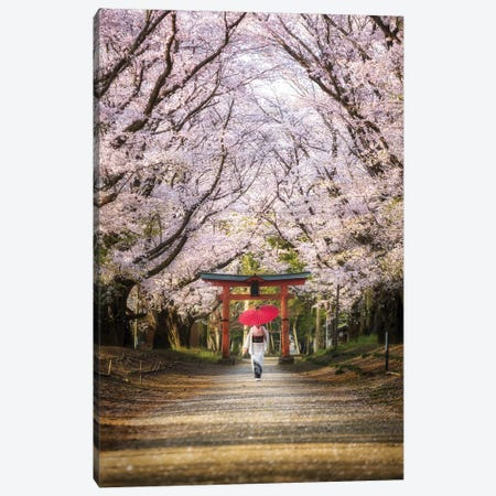 Spring In Japan III Canvas Print #DUE53} by Daisuke Uematsu Canvas Wall Art