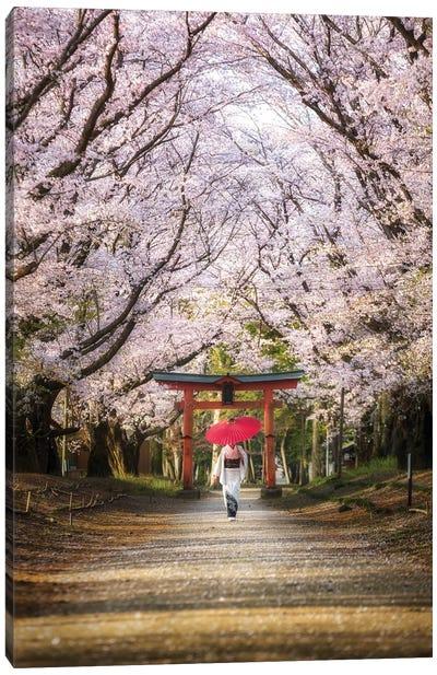 Spring In Japan III Canvas Art Print