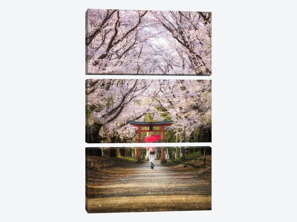 Spring In Japan III by Daisuke Uematsu 3-piece Art Print